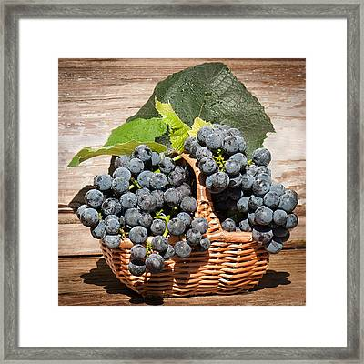 Grapes And Leaves In Basket Framed Print by Len Romanick