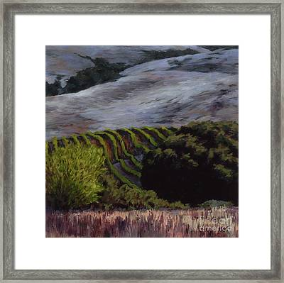 Grapes And Oaks Framed Print by Betsee  Talavera