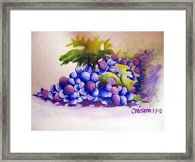 Grapes Framed Print
