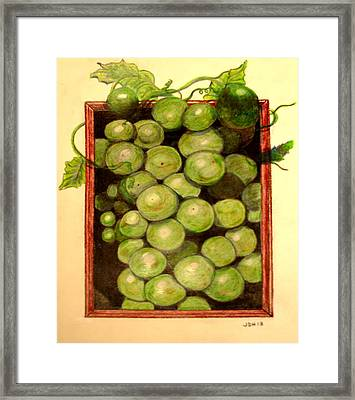 Grapes From A Frame Framed Print by Joseph Hawkins
