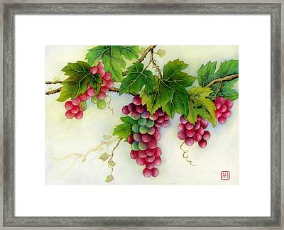 Grapes Framed Print by Hailey E Herrera