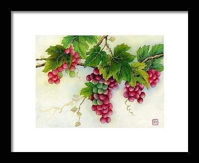 Grape Bunch Framed Prints
