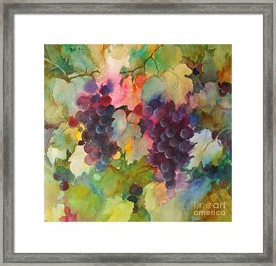 Grapes In Light Framed Print by Michelle Abrams
