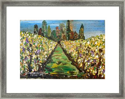 Grapes Of Tuscany Framed Print