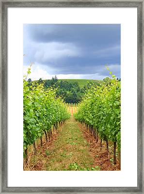 Grapes Of Wrath Framed Print