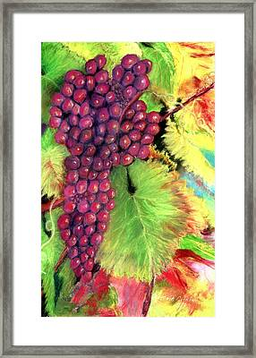 Grapes On Vine Pastel Framed Print by Antonia Citrino