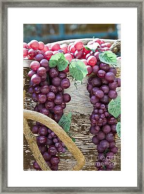 Grapes Framed Print by Tim Hightower