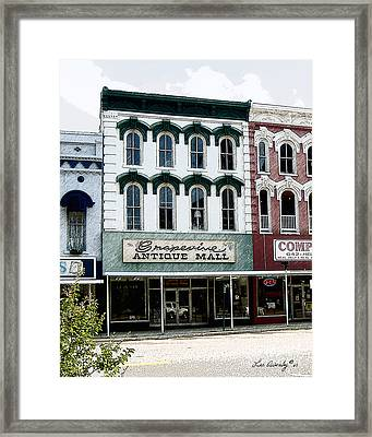 Grapevine Antiques Framed Print
