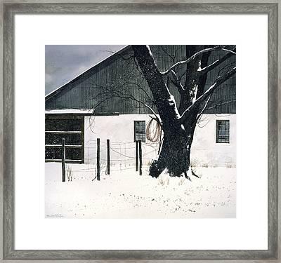 Grapevine Framed Print by Tom Wooldridge