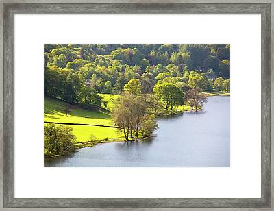 Grasmere Lake Shore Framed Print by Ashley Cooper