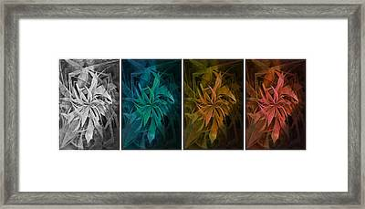 Elements Of Nature - Air Water Earth Fire Framed Print
