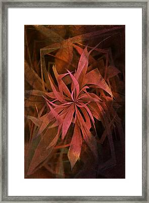 Grass Abstract - Fire Framed Print