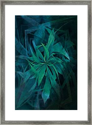Grass Abstract - Water Framed Print