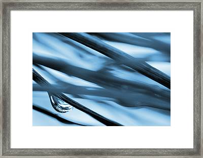 Grass And Raindrop Abstract In Blue Framed Print by Natalie Kinnear