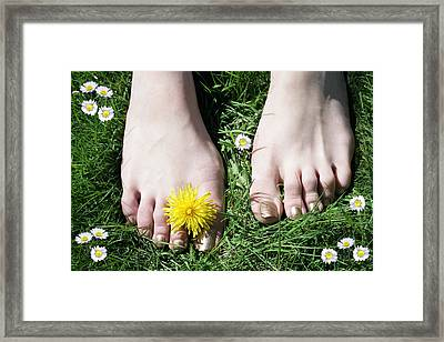Grass Between My Toes Framed Print by Stephen Norris