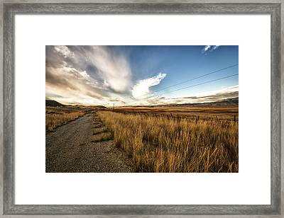 Grass Growing Along A Gravel Road Framed Print by Marg Wood
