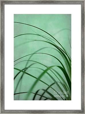Grass Impression Framed Print