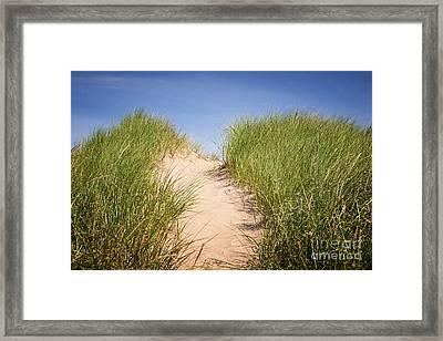 Grass On Sand Dunes Framed Print