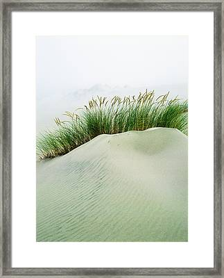 Grass On The Sand Dunes With Fog Framed Print by Robert L. Potts