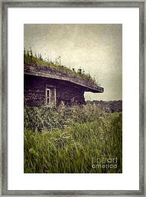 Grass Roof On Cottage Framed Print by Jill Battaglia