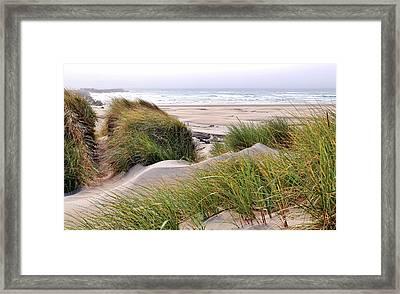 Grass Sand Wind At The Beach Framed Print