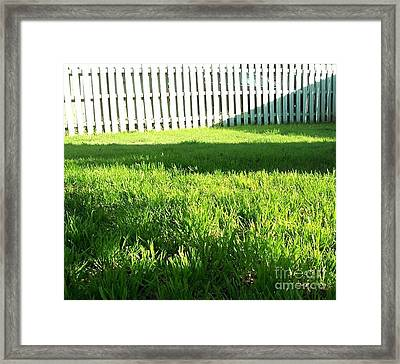 Grass Shadows Framed Print
