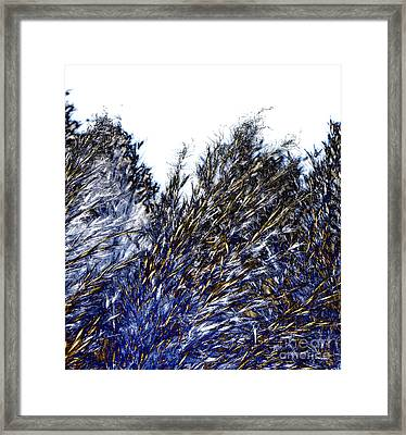 Framed Print featuring the digital art Grass Solarisation by Rudi Prott