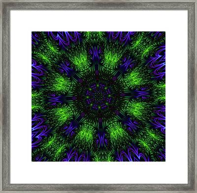 Grass Views Kaleidoscope Framed Print