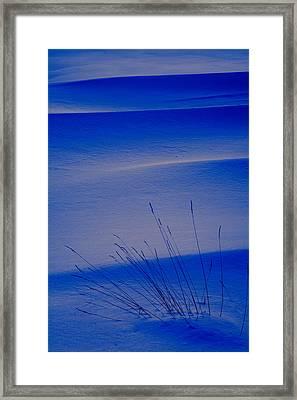Grasses And Twilight Snow Drifts Framed Print by Irwin Barrett
