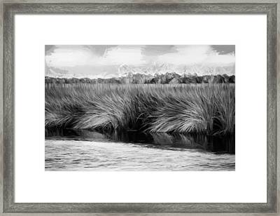 Grasses At Sunset Painted Bw Framed Print by Rich Franco