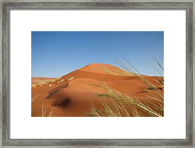 Grasses, Dune, And Setting Moon, Namib Framed Print by Jaynes Gallery