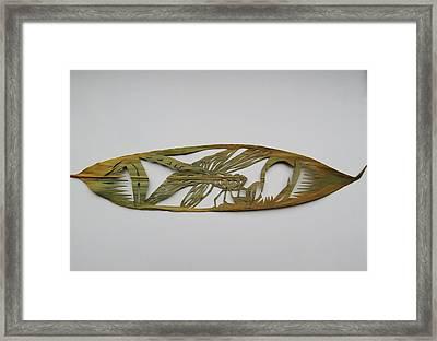 Grasshopper On Bamboo Leaf Framed Print by Alfred Ng