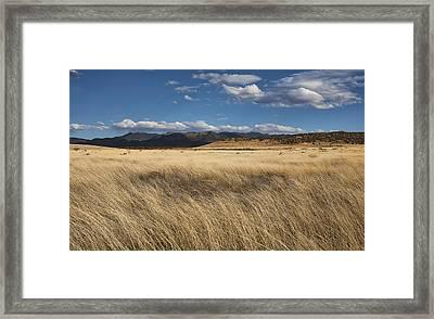 Grassland Expanse Framed Print by Gregory Scott