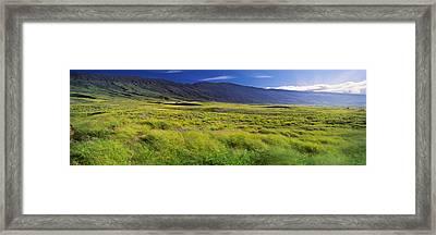Grassland, Kula, Maui, Hawaii, Usa Framed Print