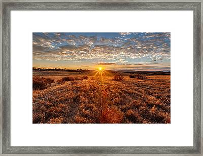 Grassland Sunset Framed Print by Peter Tellone