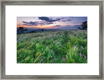 Grassy Bald Ridge Sunrise Framed Print