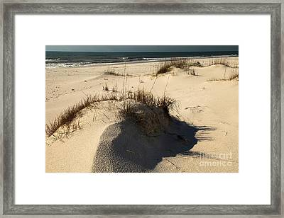 Grassy Dunes Framed Print by Adam Jewell