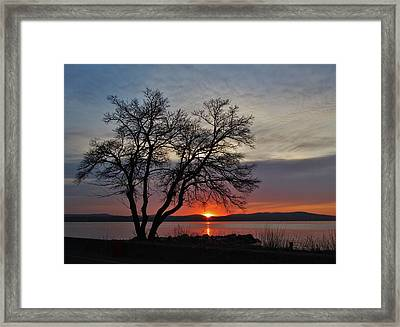 Grassy Point Sunrise Framed Print by Thomas  McGuire