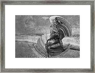 Grateful Dead Rocking Framed Print by Betsy Knapp