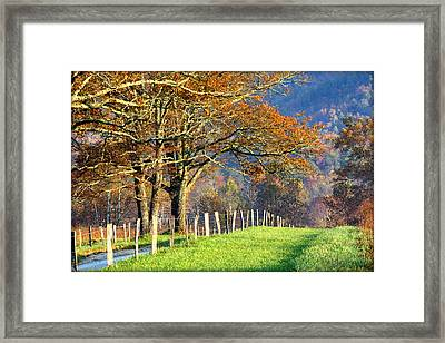 Grateful Drive In Fall Framed Print by Susie Weaver