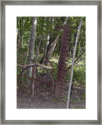 Grave Site Framed Print by Tara Lynn