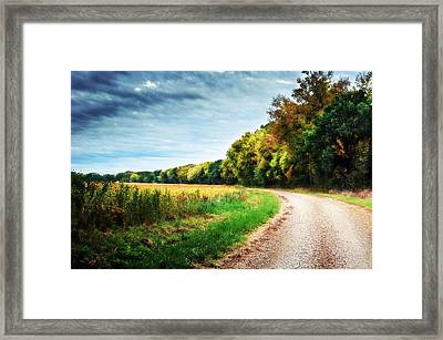Gravel Curve In The Fall Framed Print by Eric Benjamin