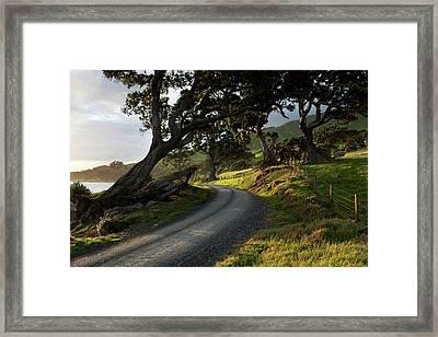 Gravel Seaside Road At Sunset Framed Print