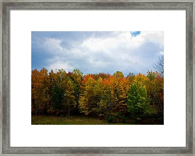 Gray Autumn  Framed Print by Claus Siebenhaar