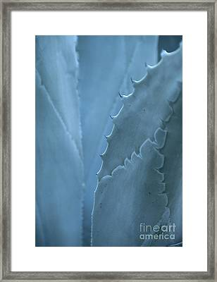 Gray-blue Patterns Framed Print