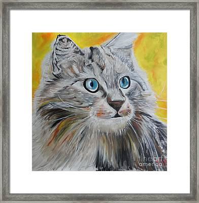 Gray Cat Framed Print by PainterArtist FIN