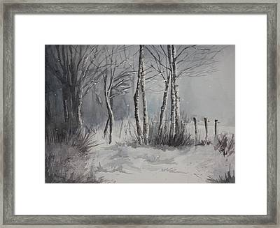 Gray Forest Framed Print