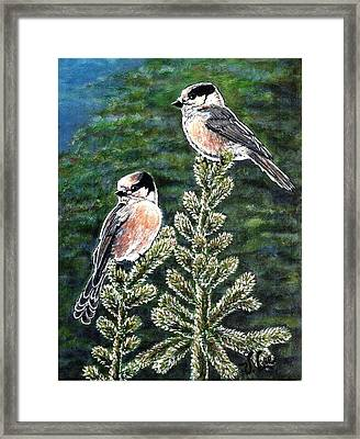 Framed Print featuring the painting Gray Jays by VLee Watson
