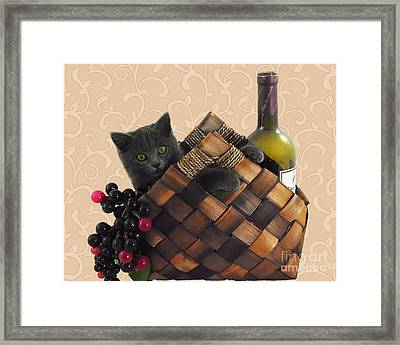 Gray Kitten Wine Basket And Grapes Framed Print