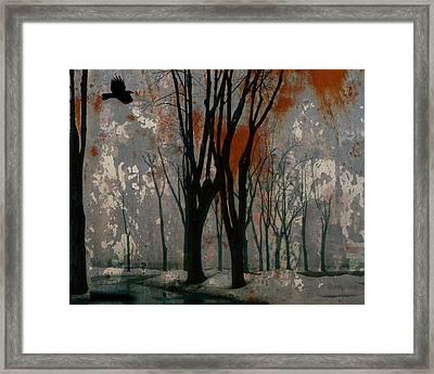 Gray Mirage Framed Print